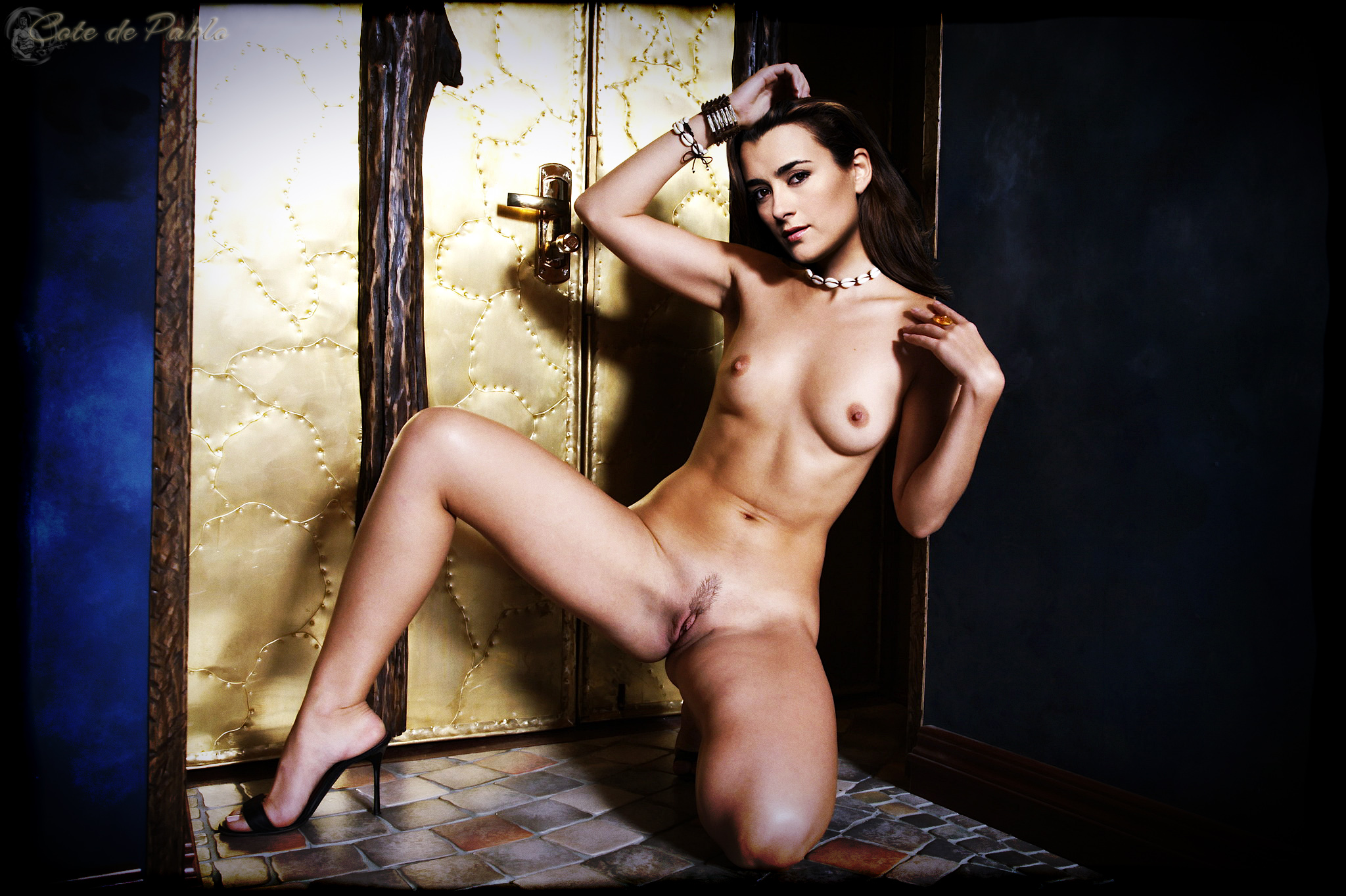 Cote de pablo fake naked photos